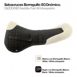 SALVACRUZ BORREGUILLO...